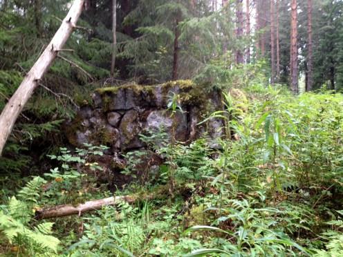 Uutelan torpan jäänteitä. Kuvaaja: Susanna Helminen.