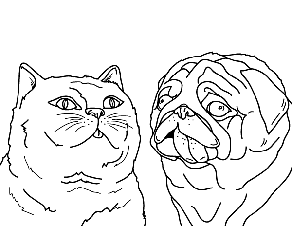 Printable Cat And Dog Coloring Page
