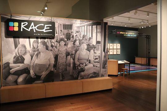 人種に関する展示