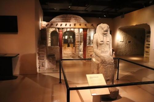 歴史学・人類学・民族学に関する展示も充実しています