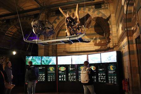 恐竜が立体的に展示されています