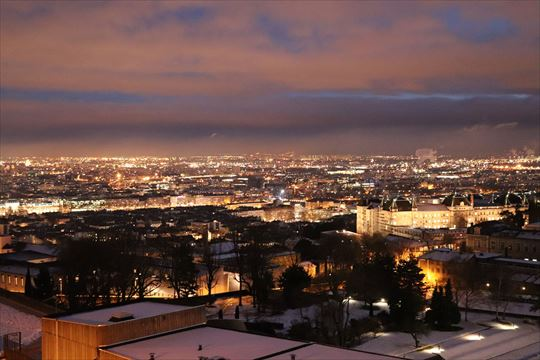 フルヴィエールの丘からの夜景