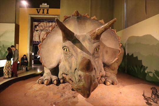 恐竜はなかなか迫力があるものもありました