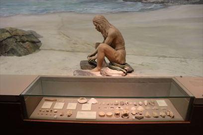 考古の展示