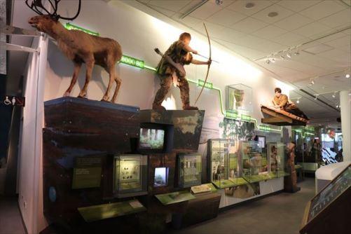 liverpoolmuseum09_R