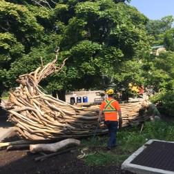 workmen installing Ernest Daetwyler's art in the McMaster artist garden.