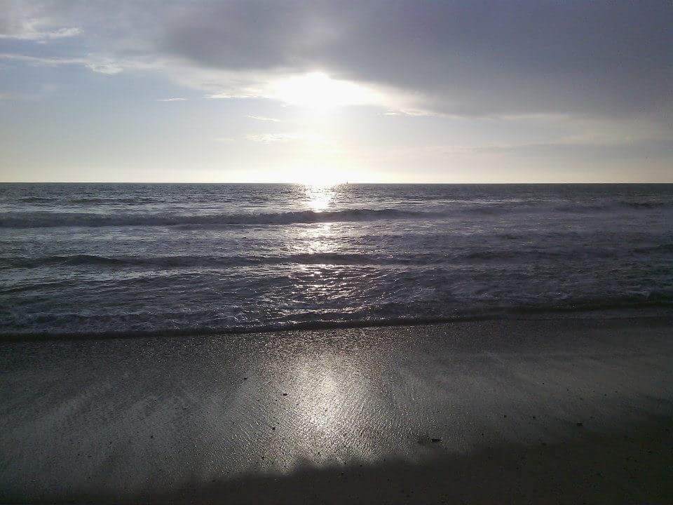 OceanJax