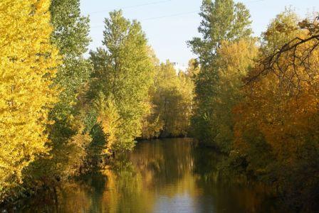 Река Смоленка