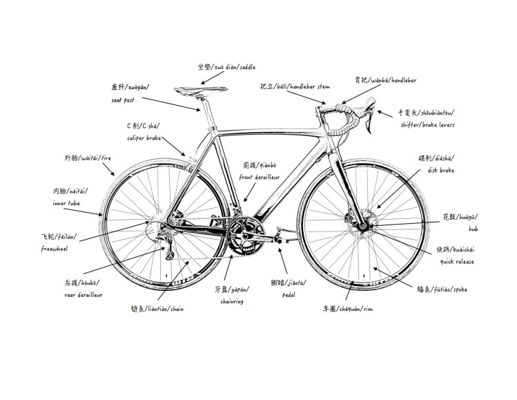 Chinese Bicycle Parts Diagram | Museum Fatigue