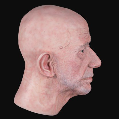 Airbrushed male airbushed fibreglass head side viewview
