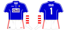 2016-Cork-GAA-goalkeeper-blue-hurling-football-jersey