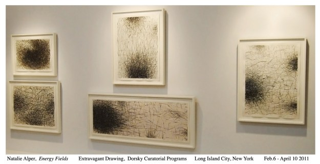 Natalie Alper 2011 Installation  Extravagant Drawings - Dorsky Curatorial Programs Long Island City N.Y.-1