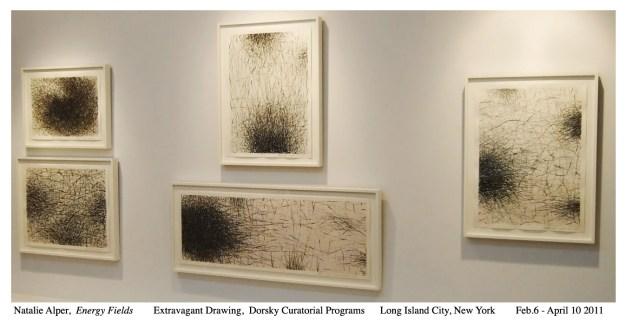 Natalie Alper 2011 Installation  Extravagant Drawings - Dorsky Curatorial Programs Long Island City N.Y.-1