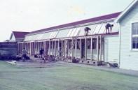 hawera-primary-school-015