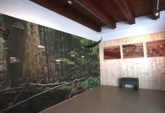 """Volkskundemuseum Graz: """"Steiermark im Blick"""" – Eine Ausstellung über Tourismus und Landwirtschaft"""