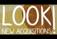 LOOK! New Acquisitions – Ein Blick auf 350 Werke aus 18 Jahren