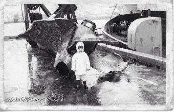 Sandra Marshall Geusebroek alongside the salvaged propeller from the TEV Wahine
