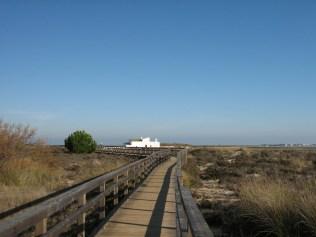 CEAM - trilho na zona dunar