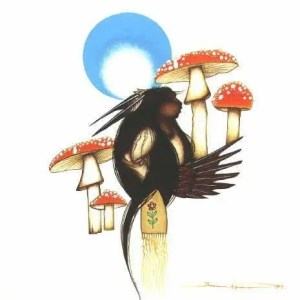 POWER OF FLIGHT - AMANITA MUSHROOMS by moonlight