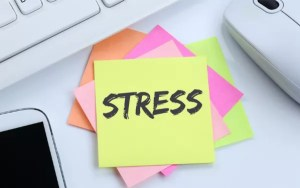 WHICH IS YOUR FAVORITE DE STRESSOR?