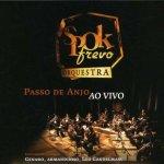 Spok Frevo Orquestra 2007 Passo De Anjo Ao Vivo