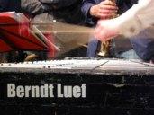 Berndt Luef