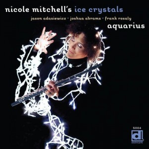 Nicole Mitchell's Ice Crystals