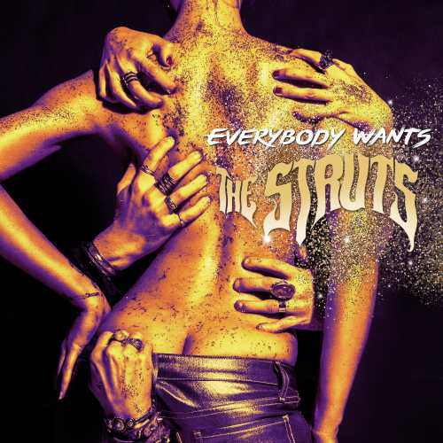Album review: The Struts - Everybody Wants