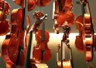 Las claves para escoger el primer violín