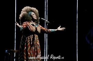 © Danny Kaan| Musical Reports
