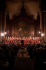 2011-12-04au11 Meltiques Concert Photo1