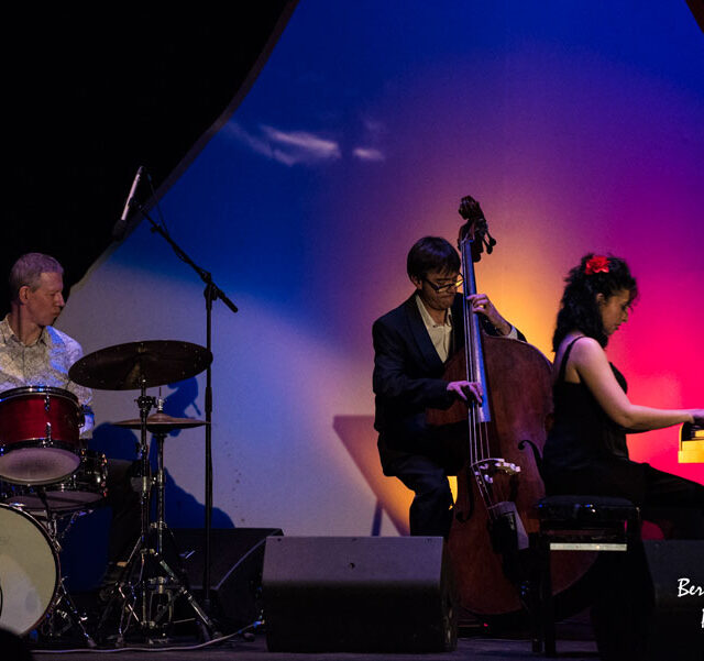 Ramona-Horvath-Trio_Paris_2017_19