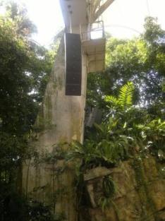 Zoo_singapore3