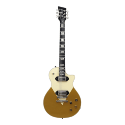 orange Custom_Guitar1