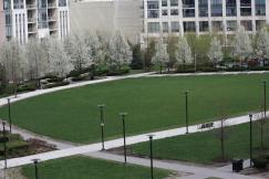 Lake Shore East Park IMG_5848_1