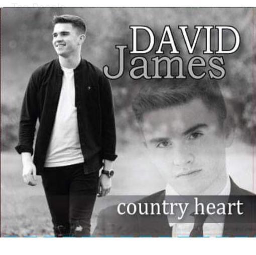 David James Country Heart CD