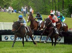 Nashville Iroquois Steeplechase Family Fun