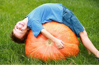 Put Pumpkin Back Into Autumn
