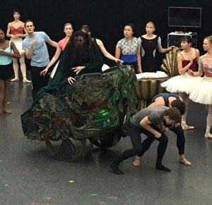 Children Nashville Ballet Sleeping Beauty