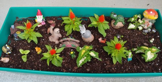 fairy garden design kids