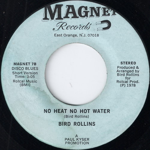 купить виниловую пластинку Bird Rollins - No Heat No Hot Water on Magnet Records