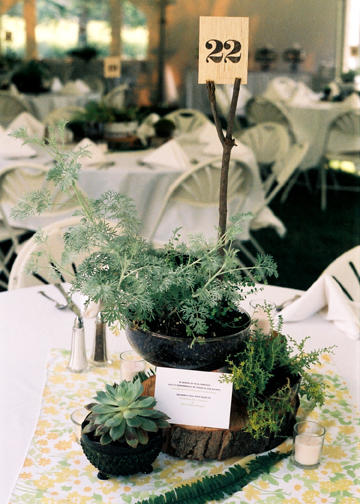 WedWed Potted Plant Centerpieces MUSIC ART