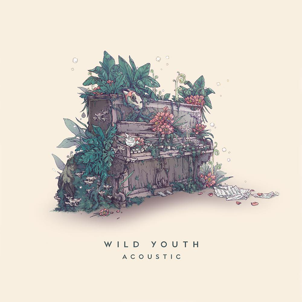 Dabin Delivers Acoustic Wild Youth EP