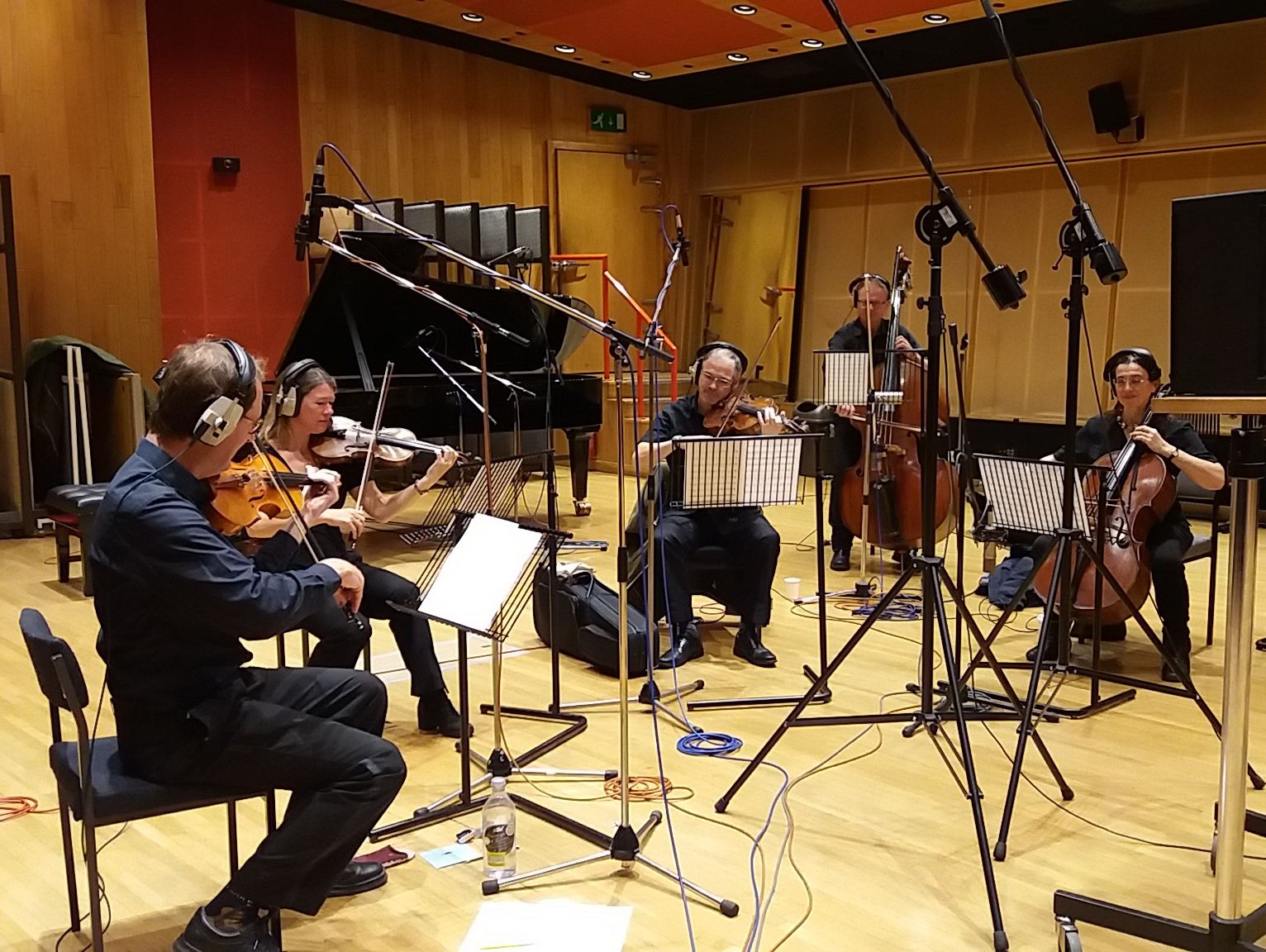 Professional Studio Strings for Recording Sessions