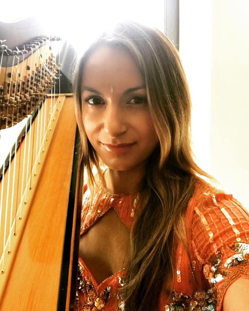 Bollywood Indian Music Harpist