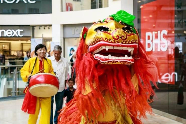 Beautiful-Chinese-Lion-Head-Shot
