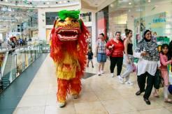 Chinese-Lion-Dragon-London