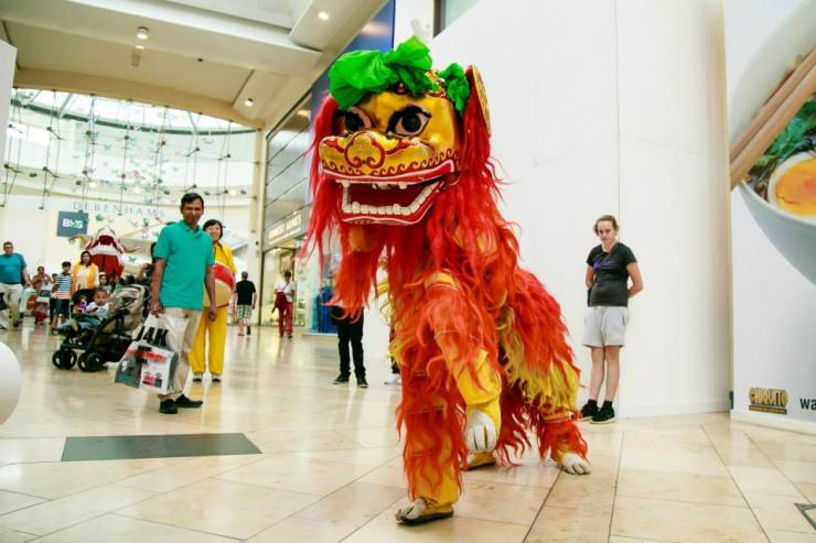 Chinese-Lion-Happy-Shoppers