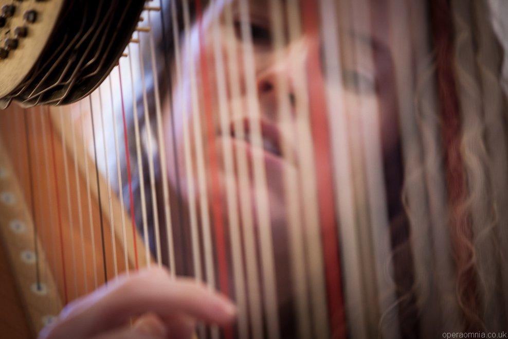 Wedding Harpist London