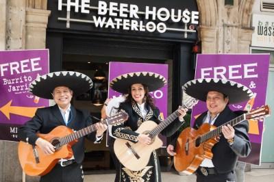 Cuerto - Mariachi Mexican Musicians